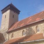 w2014_Malancrav Valea Viilor Calnic  06