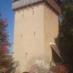 w2014_Malancrav Valea Viilor Calnic  14