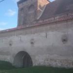 w2014_Malancrav Valea Viilor Calnic  20